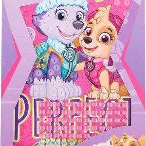 Paw Patrol - Sticker-kleurkaarten - Sticker scene -  DIY schilderij - 2 kaarten en circa 250 stickers!